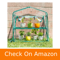 Educational-Insights-GreenThumb-Greenhouse-with-Vinyl-Cover